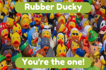 Rubber Ducky Youre  the one