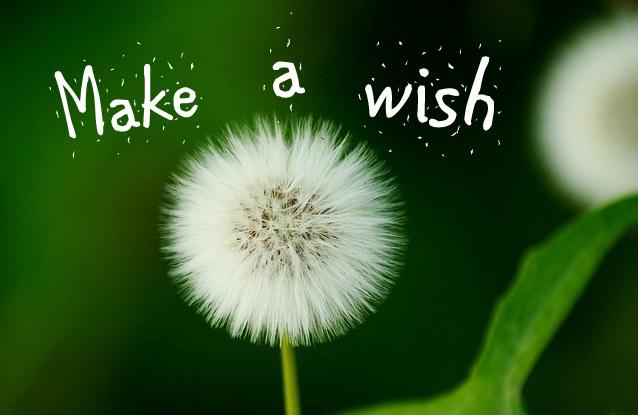 make a wish 2x3 fridge magnet magneticappealshops com